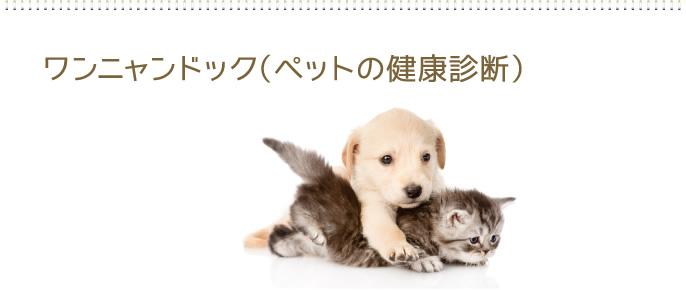 ワンニャンドック(ペットの健康診断)
